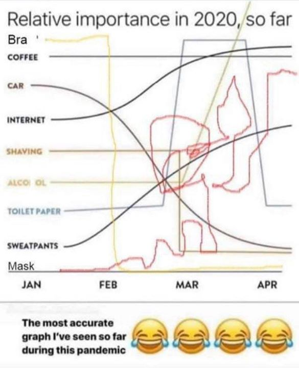 FB 2751 - ..... the most important graph of 2020 ..😂😂😂😂😂😂